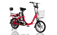 factory cheap portable girl electric bike wholesale