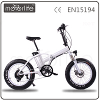 MOTORLIFE/OEM brand hot sale 36v 250w easy rider electric bike, electric racing bike