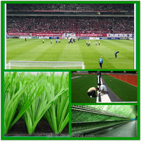 55mm Waterproof artificial grass turf &synthetic grass for mini football soccer field