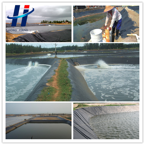 Hdpe Waterproofing Geomembrane For Pond Liner Buy Hdpe