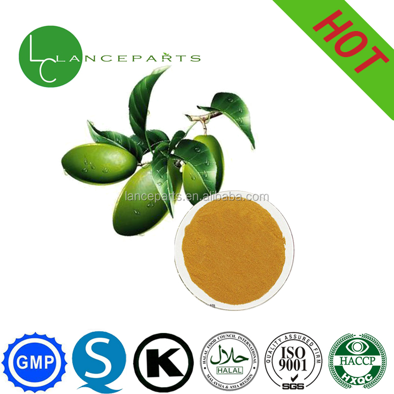 Cosmetics material Skin-care Olive tree leaf extract powder Oleuropein 80%