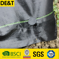 weedbarrier, agriculture pp weed mats, 100% virgin pe anti ground cover cloth