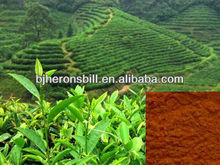 Instant black tea powder factory price