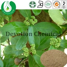 100% Natural Radix Morindae Officinalis Extract