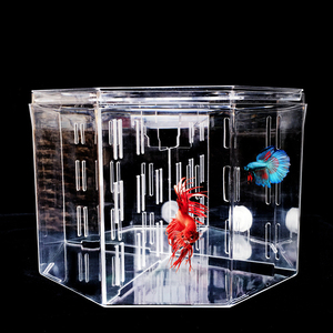 Big Size 4 Rooms Aquarium Acrylic Four Splits Betta Fish Tank With Basket Plant 4 Bow Fighting Isolation hatch breed box