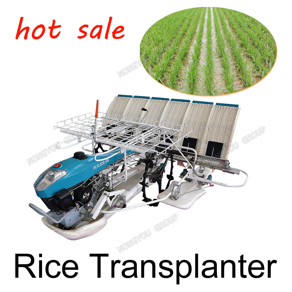 Walking Type Paddy Transplanting Hand Paddy Transplanting Machine 2ZS-6A