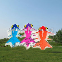 sport products manufactrers cheap kite