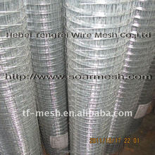5' tall yard guard Wire Fencing (Galvanized before or after welding ISO 9001)
