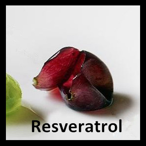 Resveratrol Grape Skin Extract- Preventing Cell Damage Caused by Free Radicals