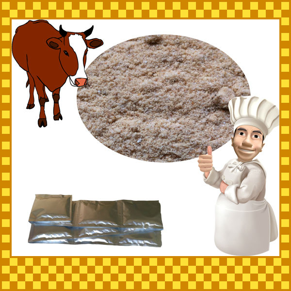 20g Sequent Bag Halal Beef Flavoring Powder