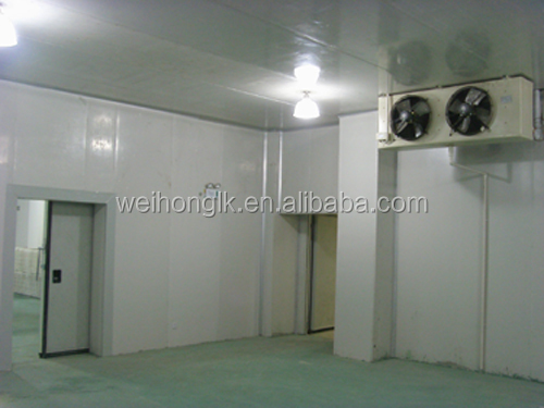 easy convenient for transport containerized cold room for fruit and vegetable