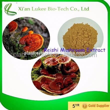Vietnam Arabica Black Coffee Bag Slimming Coffee Lucidum Ganoderma