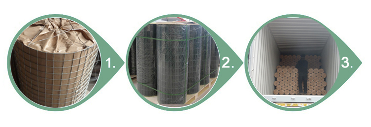 2x2 Galvanized Welded Wire Mesh Panel An Ping