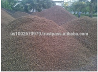 Palm Kernel Shell From Indonesia