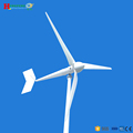 Minimal maintenance, first-class service wind turbine generator 5KW