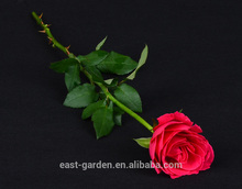 Wholesale price flower rose pink decor with best quality and low