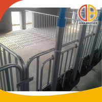 Poultry equipment pig farm galvanized pipe steel crates