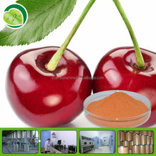 100% pure natural Acerola Cherry Powder with free sample
