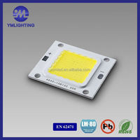 High Power Cob Led 20W For Indoor Lighting Flood Light