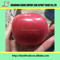 Tasty apple ,nutritious fresh fuji apple unwaxed red apple