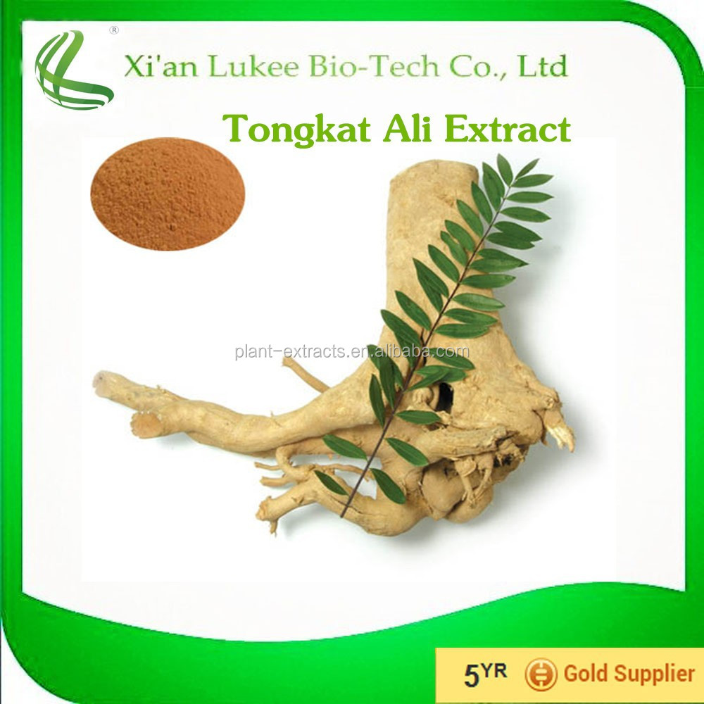 Free samples offer Bulk price Tongkat Ali Extract Powder for making sex pills