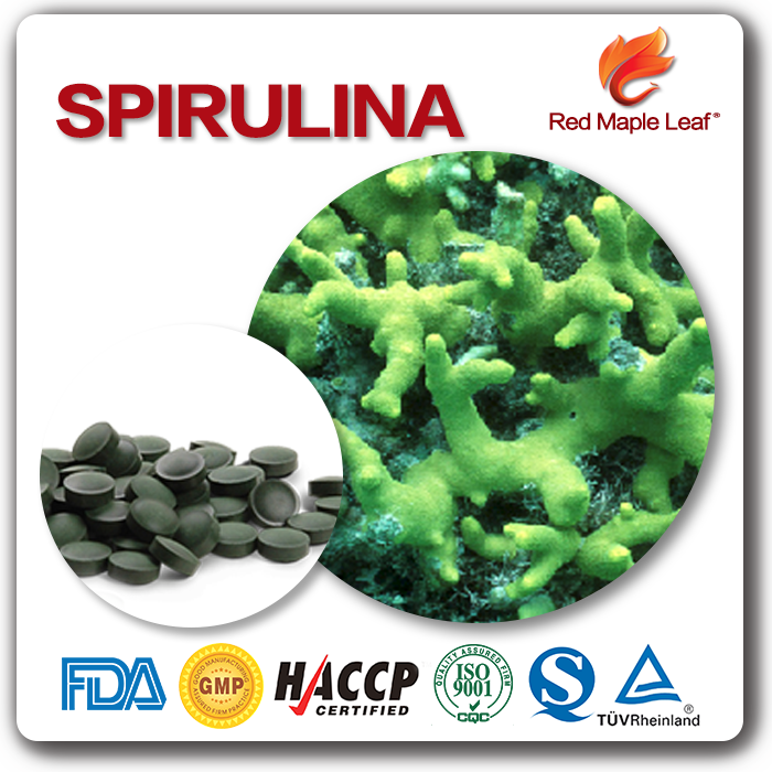 OEM 500mg Pain Relief Spiral Seaweed Tablet Pellet Pill