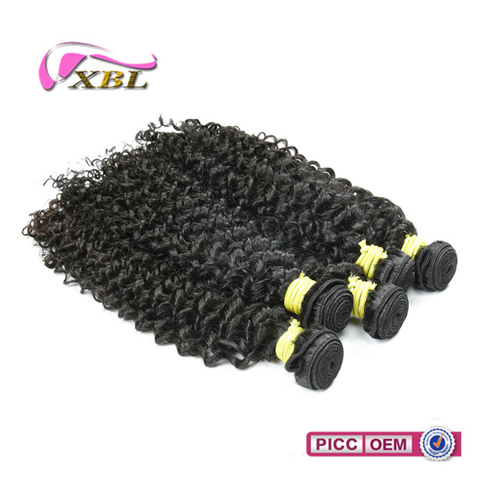2017 Fashion Hair Style Top Quality Mongolian Curly wholesale human hair