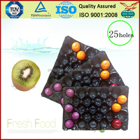 Plastic Stackable Fruit Tray