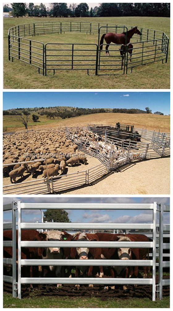 ISO9001 cheap price made in chia cattle farm equipment 1.8m x 2.4m 6 bar livestock yard panels