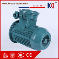 Explosion Proof High Voltage Ex Motor With CE Certificate