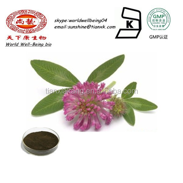 Isoflavone Powder 30% Red Clover Herbal Extract Powder / Trifolium Pratente L Extract Isoflavone Powder /Red Cover Powder