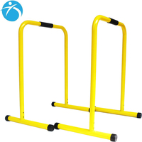 Hot Selling Indoor Outdoor Exercise Parallel Bars Gymnastics Equipment