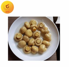best cooked canned mushroom supplier