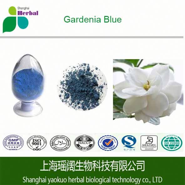 Excellent quality cape jasmine fruit extract /Gardenia Blue Pigment by TLC 20:1