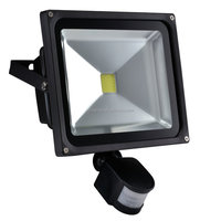 PIR Motion Sensor 50w COB Led