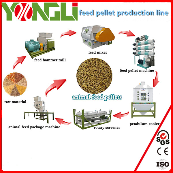 Widely used 11-28 ton per hour animal feed pellet line small farm for poultry