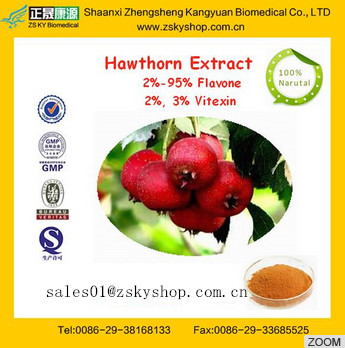 Hot sale Natural Hawthorn Berry Extract