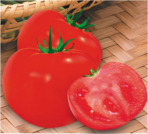 Big Red Fruit Tomato Seed For Sale FST069