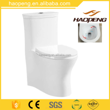 New design 4D Flush Unique Siphonic toilets/Snow Glaze One Piece Siphonic Water Closet Size