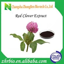 Hot selling Red Clover Extraction 10%