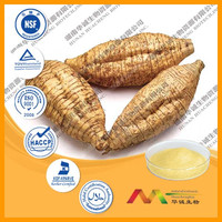 Real GMP Supplier Provide Best Pueraria Lobata Root Extract