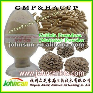 Maitake Powder