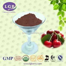 Natual Acerola Cherry Extracts Powder VC Herbal extract powder