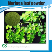 pure natural moringa leaf powder with great price