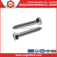 DIN 7976 Ss 304HC outside hex head self tapping screw