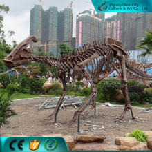 Museum quality life size dinosaur fossils specimen for sale