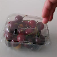 Disposable plastic fresh fruit/strawberry/cherry container
