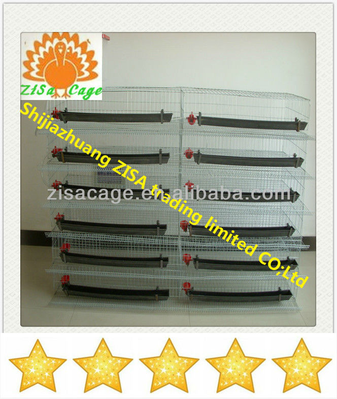 quail egg laying cages for sale from china zisa