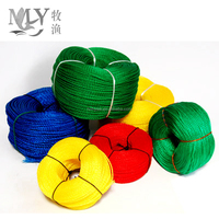 Hot Sell Nylon Pe Color Rope