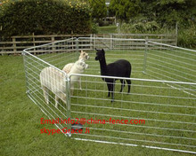 hot dipped galvanized low cost sheep/goat yard panels and gate